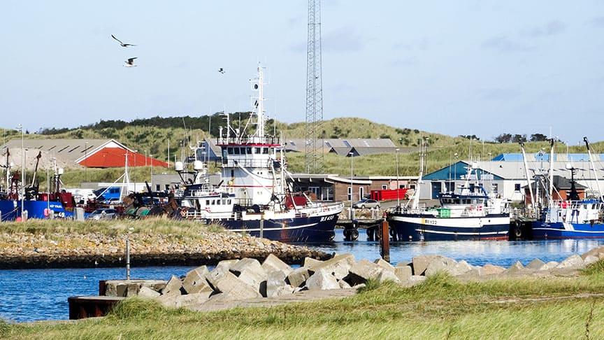 Dänemark Friendscamp 2021 3