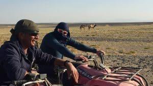 Ägypten Reiseblog - die Wüste lebt! 12