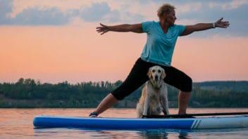 sup yoga mit hund