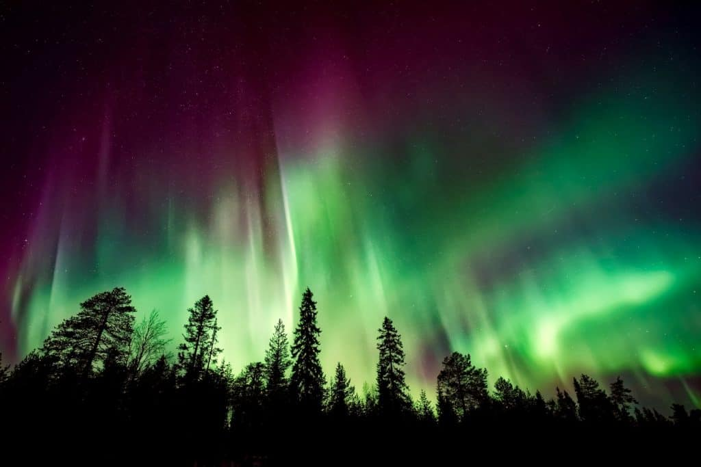 Lappland Snowkite-Camp 22.01.-05.02. 2022 4